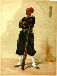 Zouave Seneglais